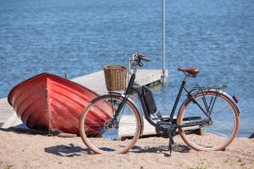 Pilen elcykel